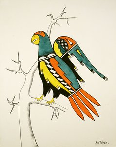 Stylized Drawing of Parrot