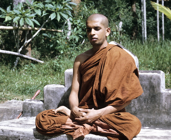 buddhist single men in donald Buddhist personals ads for men & women to meet each other a social network for singles interested in buddhism.