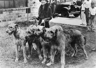 Elizabeth White walking four of her beloved Irish wolfhounds in downtown Santa Fe. The Whites raised prize-winning Irish wolfhounds and Afghan hounds starting in 1931. AC20_02g