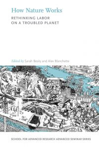 How Nature Works: Rethinking Nature on a Troubled Planet, edited by Sarah Besky and Alex Blanchette, 2019