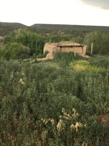 POSTPONED: Field Trip: History and Archaeology of Picuris Pueblo @ Depart from SAR | Santa Fe | New Mexico | United States