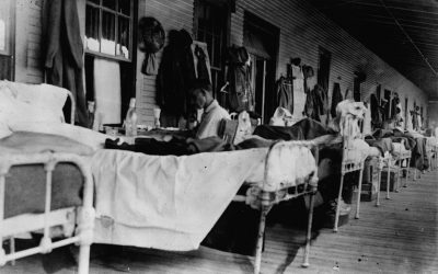 New Mexico in a Time of Influenza