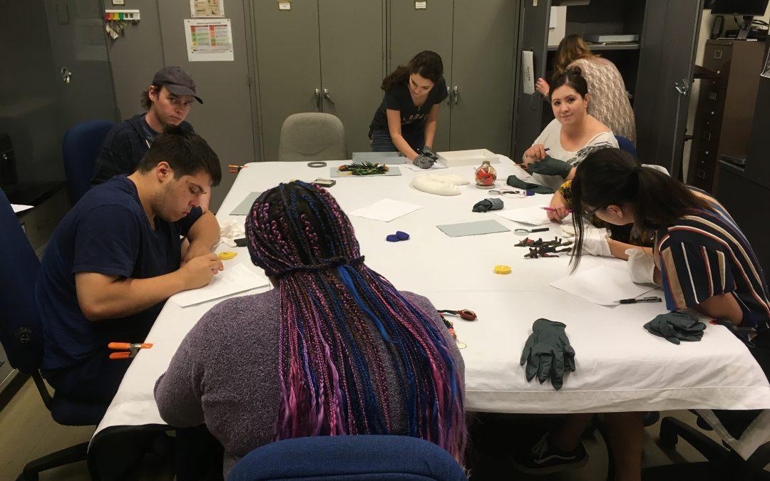 Guidelines in Action: The University of Colorado Museum Studies Program