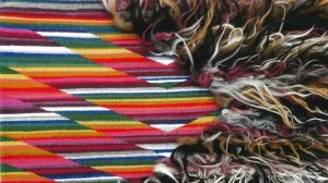 SAR In-Depth Course: Spider Woman's Knowledge and the Survival of Diné Textile Arts @ Hosted online. Register below.